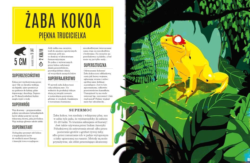 Superzwierzaki – Żaba Kokoa, piękna trucicielka